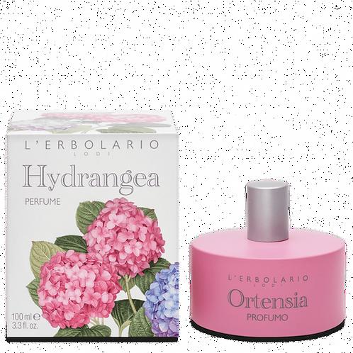 Hydrangea Perfume