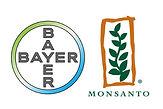 monsanto_bayer_logos_420x280.jpg