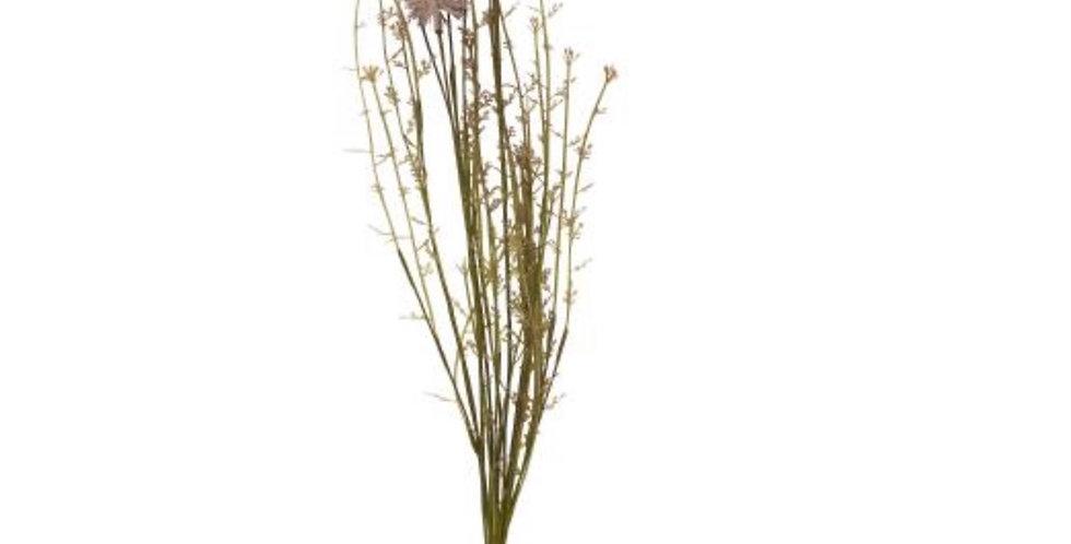 Fleurs Mauves, Ib Laursen