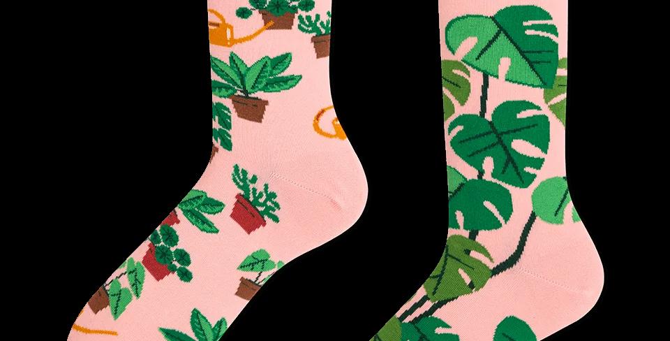 Chaussettes Dépareillées Plant Lover, Many Mornings