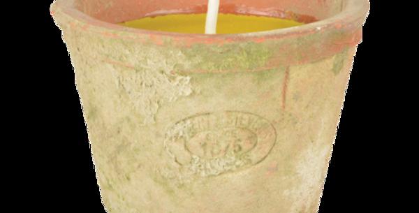Bougie Citronnelle Pot Terre Cuite, Esschert Design