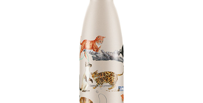 Bottle 500 Ml Emma Cats, Chilly's