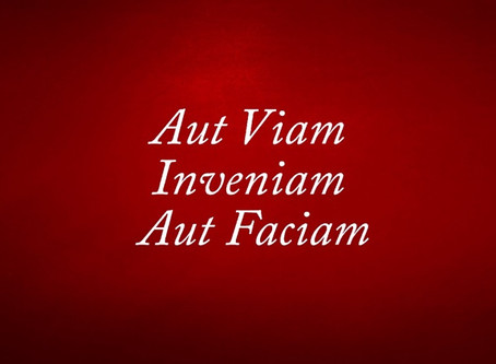 Aut Viam Inveniam Aut Faciam. I shall either find a way or I will make one. Part one: Struggle