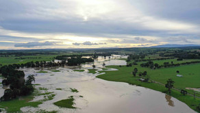 What role do floods play in the environment?