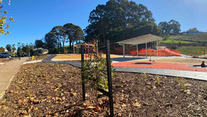 Drouin Civic Park ready to grow.