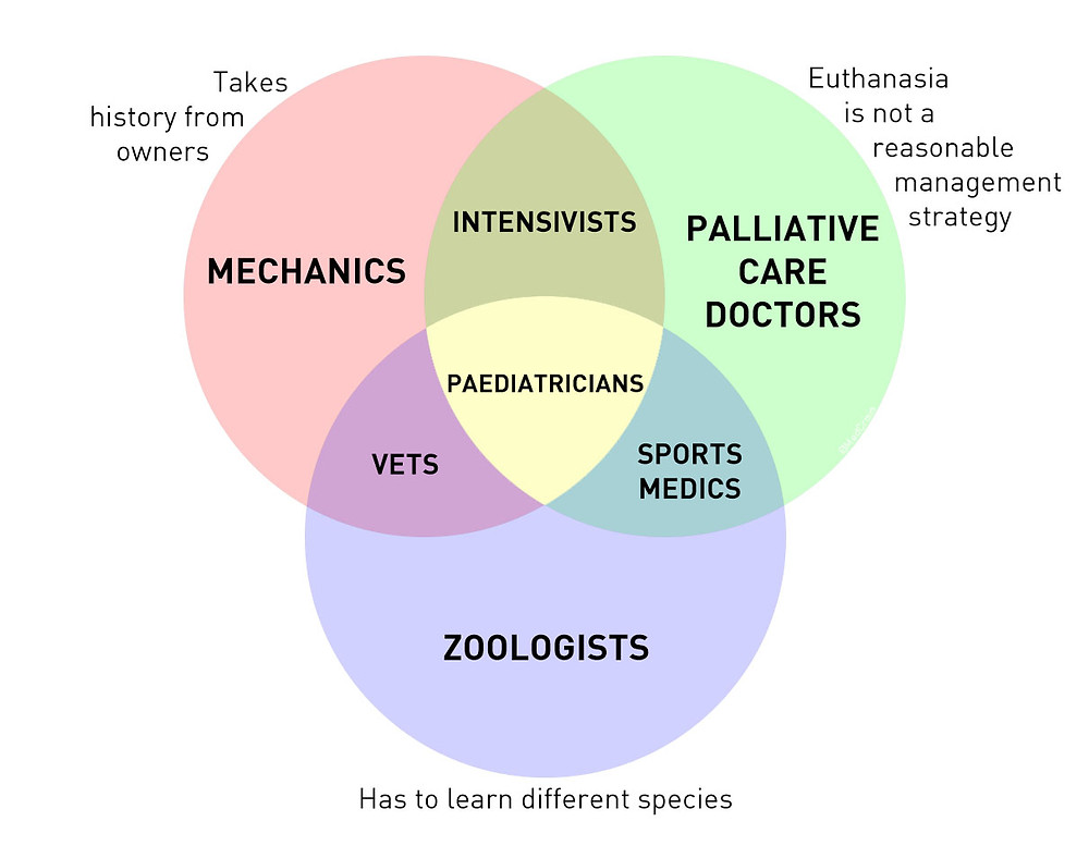 Veterinary pediatric Venn diagram