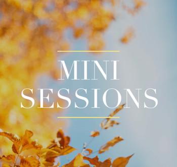 Mini Sessions...this Sunday!
