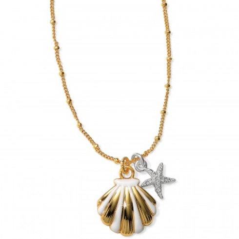 Sea Dreamer Shell Necklace