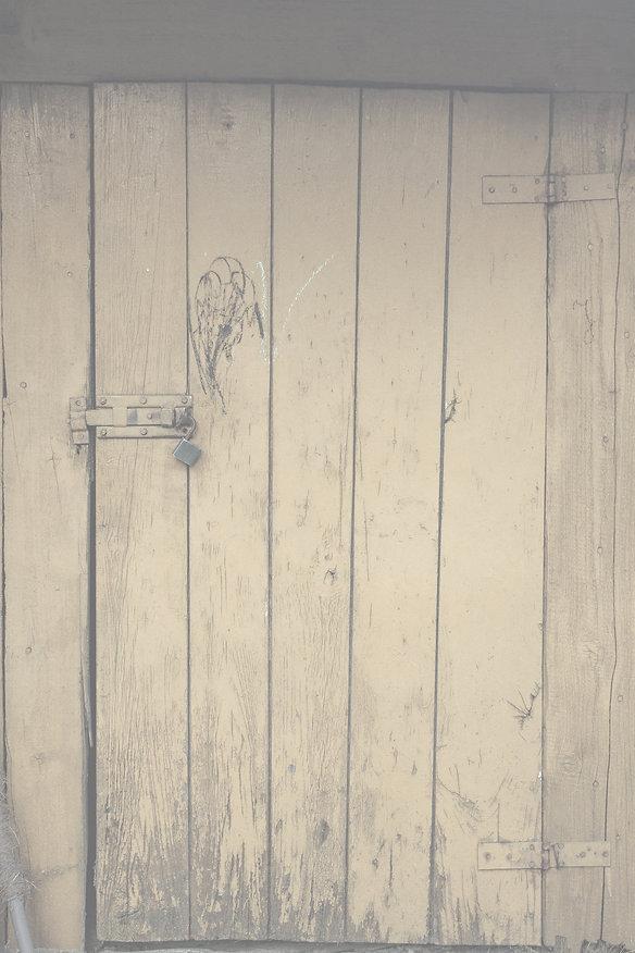 barndoor.jpg