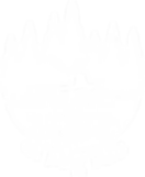 pioneer-logo copy.png