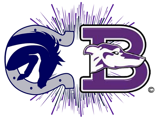 CHS_BHS Logo.png