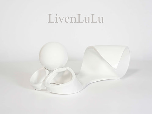 LIVENLULU - BEAU LIVRE - VeroDalla (édition française)