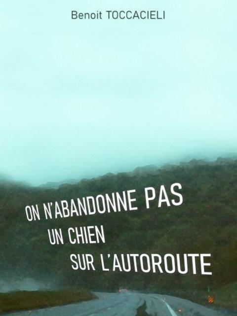 ON N'ABANDONNE PAS UN CHIEN SUR L'AUTOROUTE - Benoit Toccacieli