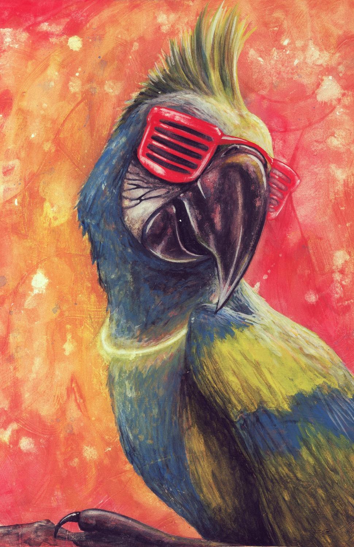 rave parrot