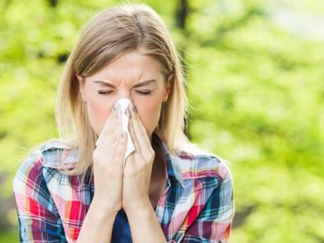 El Estornudo