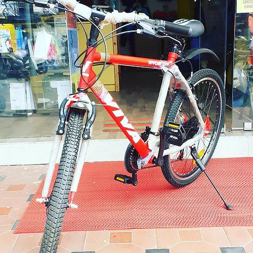 Viva cycle