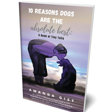 10 Reasons Dogs are the Absolute Best