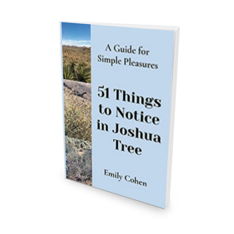 51 Things to Notice in Joshua Tree