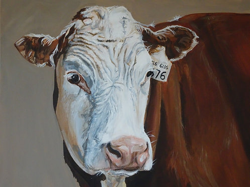 Brown Cow Print Ltd Edition (Medium Size)