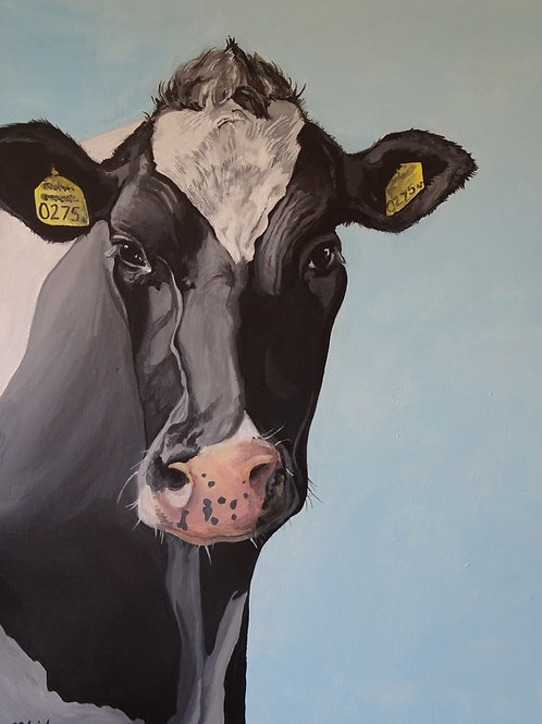 Friesian Cow Print Ltd Edition (Medium size)