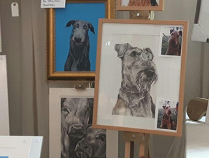 Had a fantastic weekend exhibiting at Malvern Autumn Show. Met lots of lovely people. Really appreci