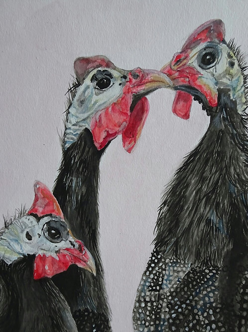 Guinea fowl- Original watercolour