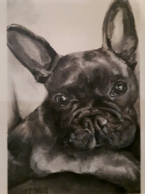 Pet Portrait- Your pet in Charcoal