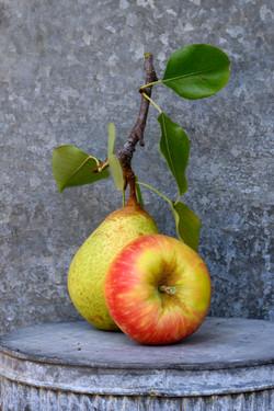 Pear-Apple 09-22-19-2015