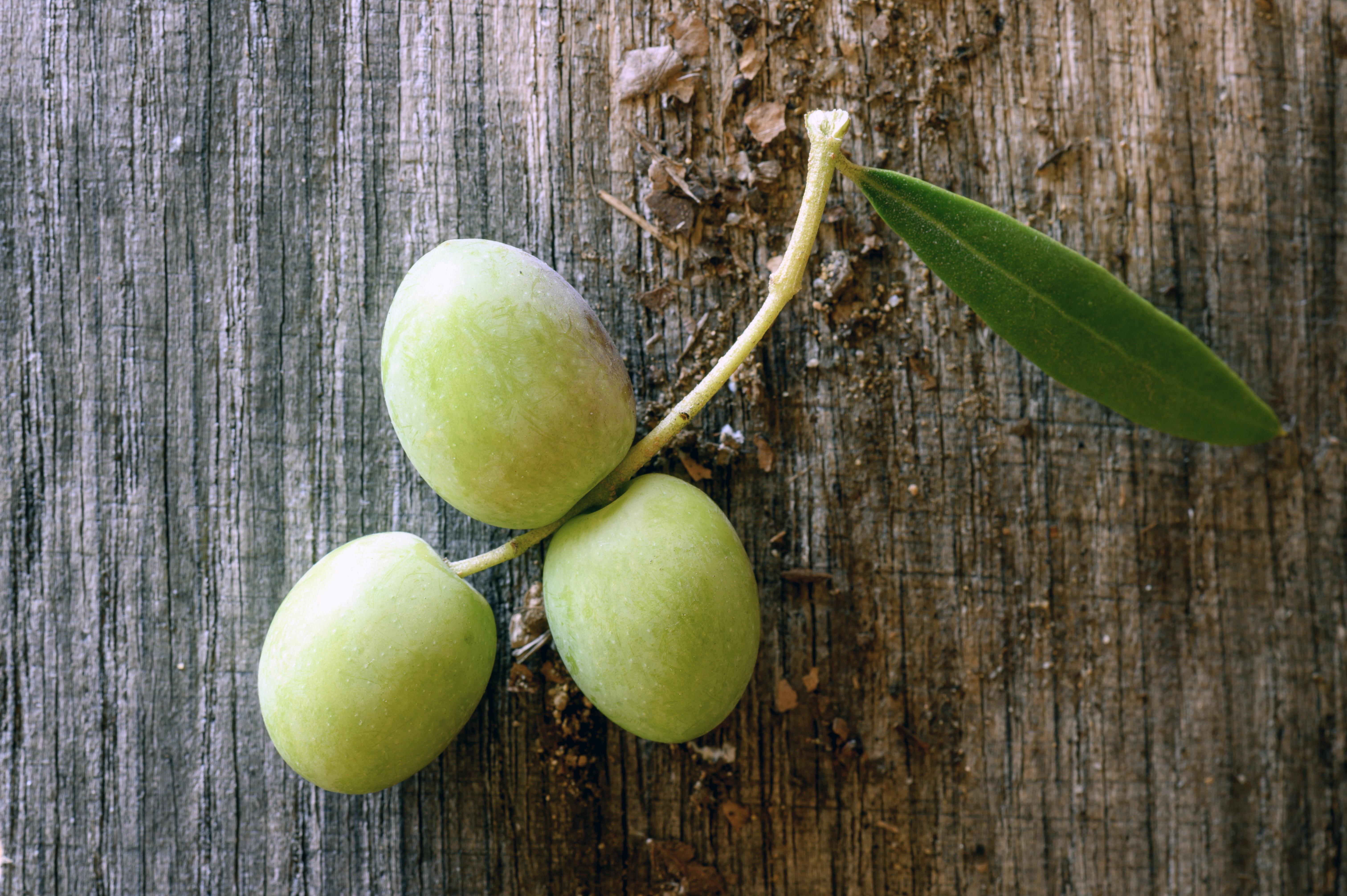 Olives 11-16-19-6065