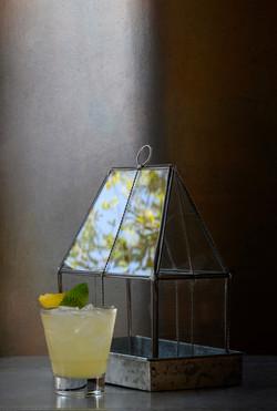 Glass House 07-11-19-LR adjusted 8541