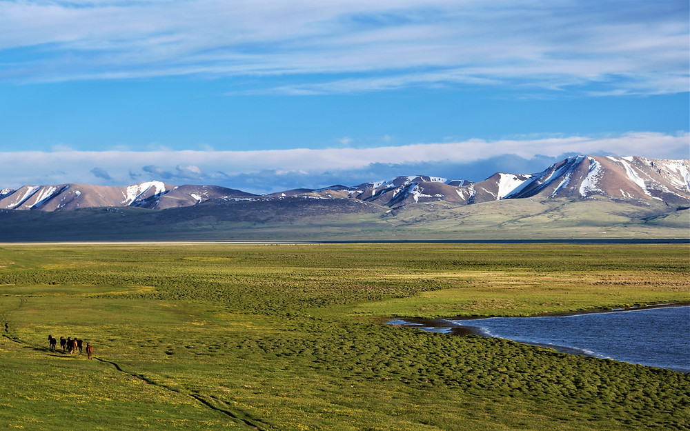 steppes-song-kul