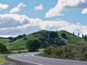Partie 1 – Road-trip en famille en Nouvelle-Zélande (le Northland)