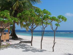 Bilan de notre séjour au Panama (23 décembre – 6 janvier)