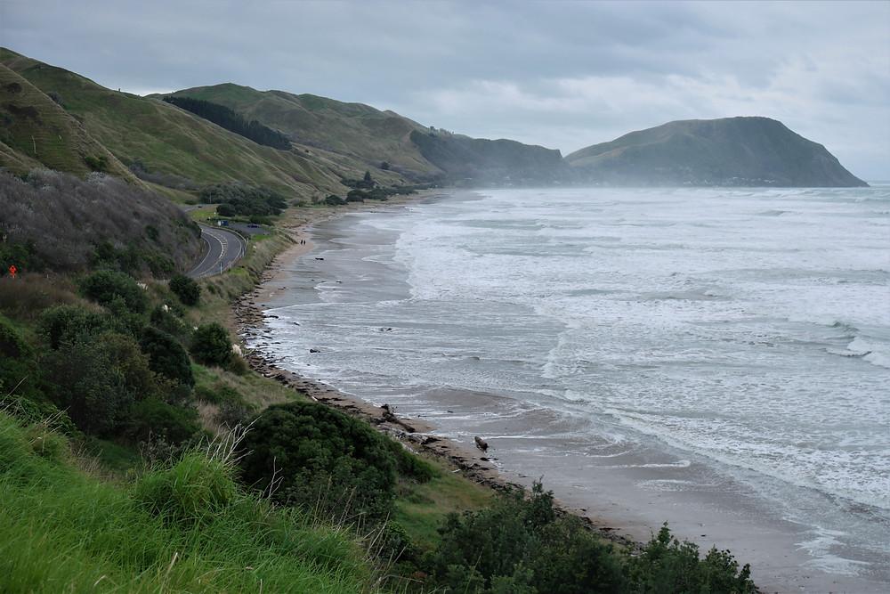 côte-est-nouvelle-zélande