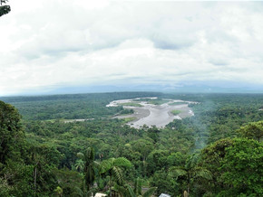 L'Amazonie – Equateur (24-25 novembre)