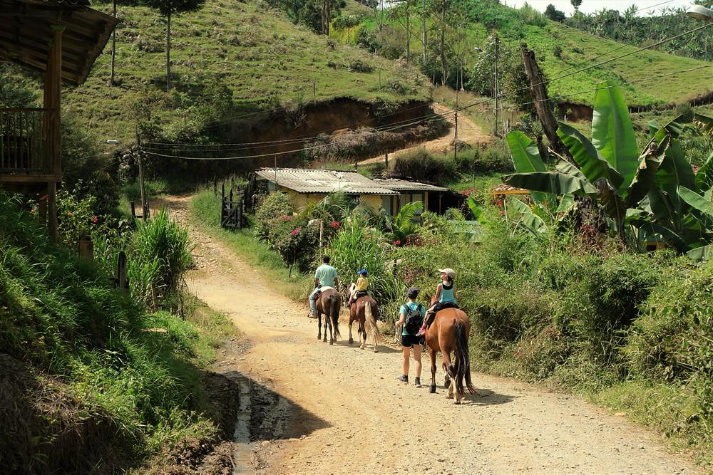 balade-cheval-jerico