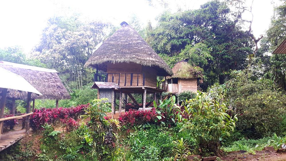 cabanes-amazonie-equateur
