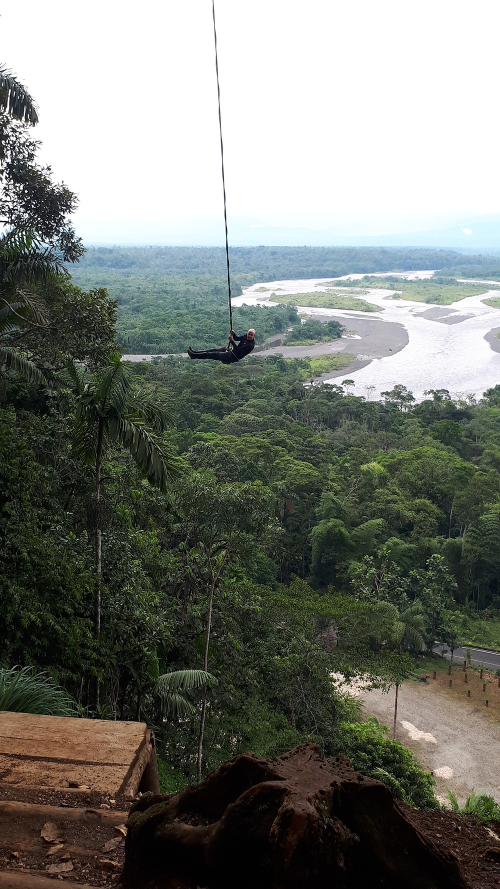 liane-amazonie