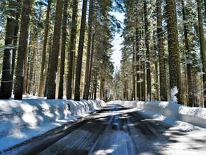 Partie 2 - Récit de notre road-trip dans le grand Ouest américain (Sonora et Yosemite Valley)