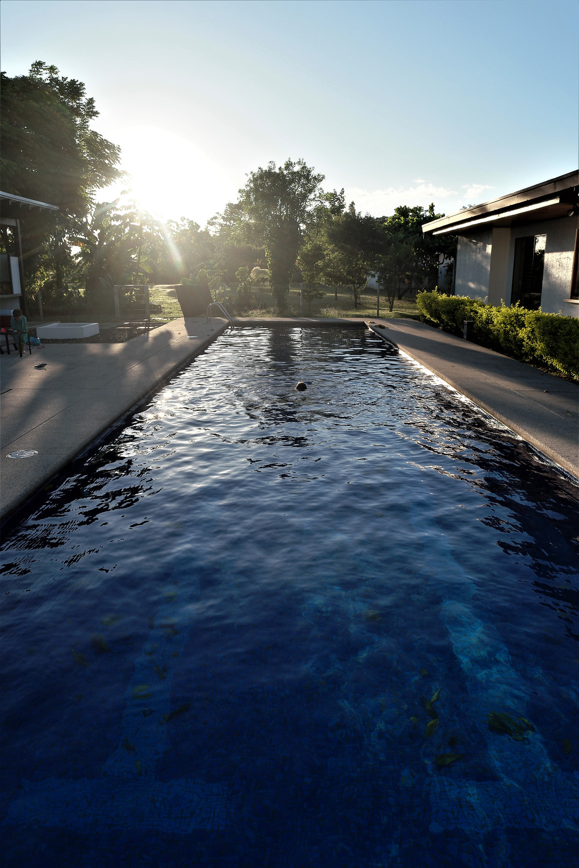 piscine-alajuela
