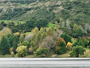 Partie 3 - Road-trip en Nouvelle-Zélande (Hawkes Bay, Dannevirke, Whanganui)