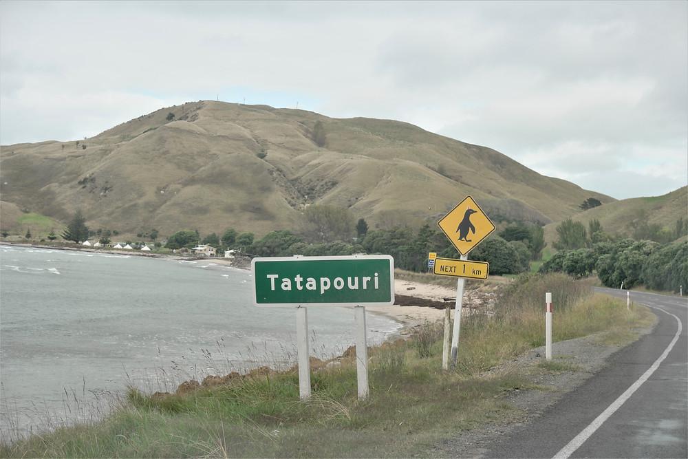 tatapouri