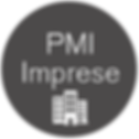 icona PMI.png