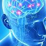 neurologia-Panta-Rei-300x300.jpg
