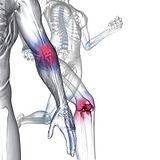 Ortopedia-300x300.jpg