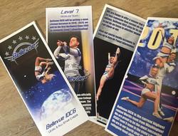 Bellevue IOC6 Brochure