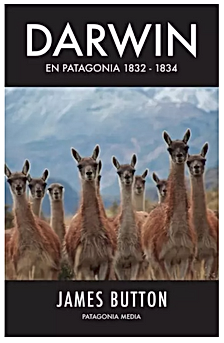 Captura de Pantalla 2020-11-29 a la(s) 1