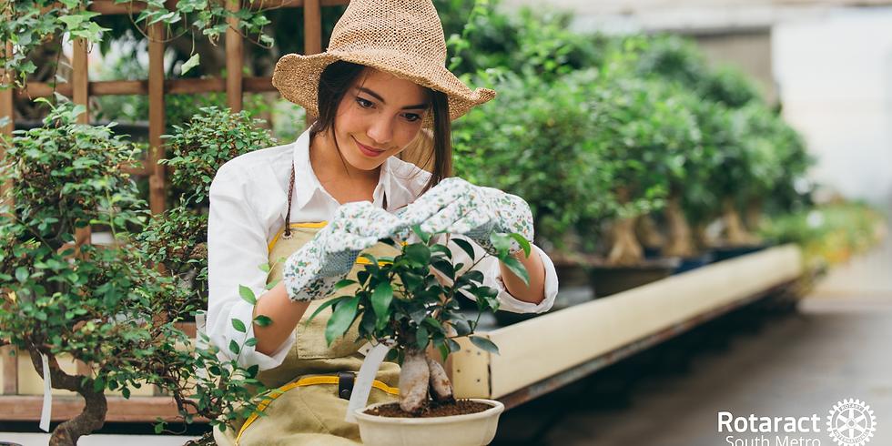 Community Gardening With The Open Door