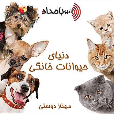 دنیای حیوانات خانگی