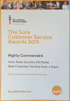 Sure - Highly commended award.jpg